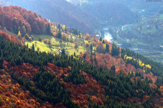 All colors of autumn in the Ukrainian Carpathians, photo 24