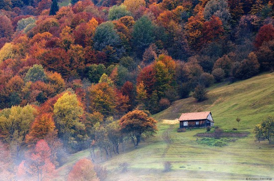 All colors of autumn in the Ukrainian Carpathians, photo 3