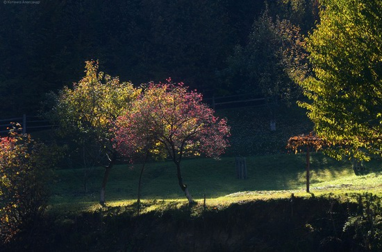 All colors of autumn in the Ukrainian Carpathians, photo 4