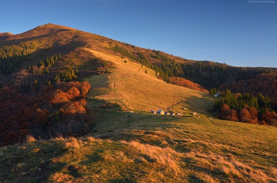 All colors of autumn in the Ukrainian Carpathians, photo 8