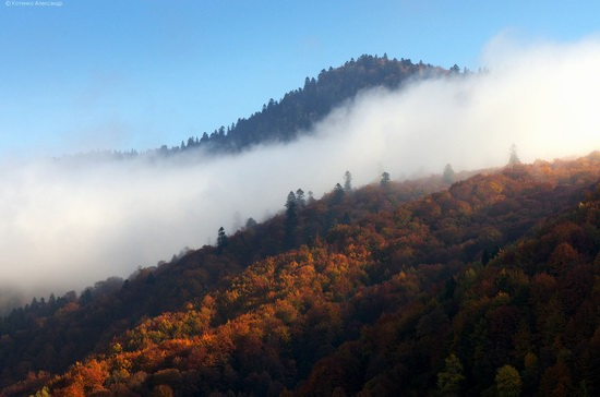 All colors of autumn in the Ukrainian Carpathians, photo 9