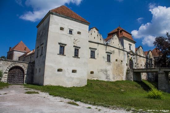 Svirzh Castle, Lviv region, Ukraine, photo 13