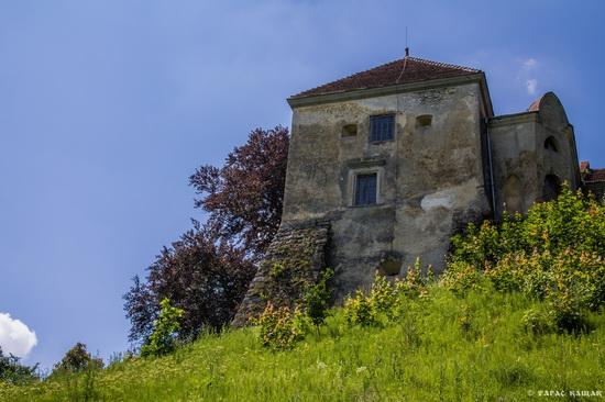 Svirzh Castle, Lviv region, Ukraine, photo 14