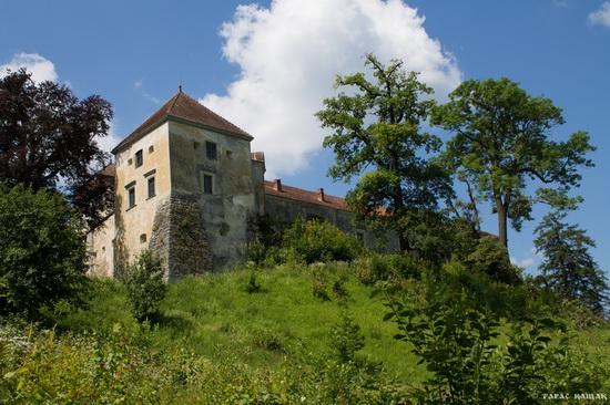 Svirzh Castle, Lviv region, Ukraine, photo 15