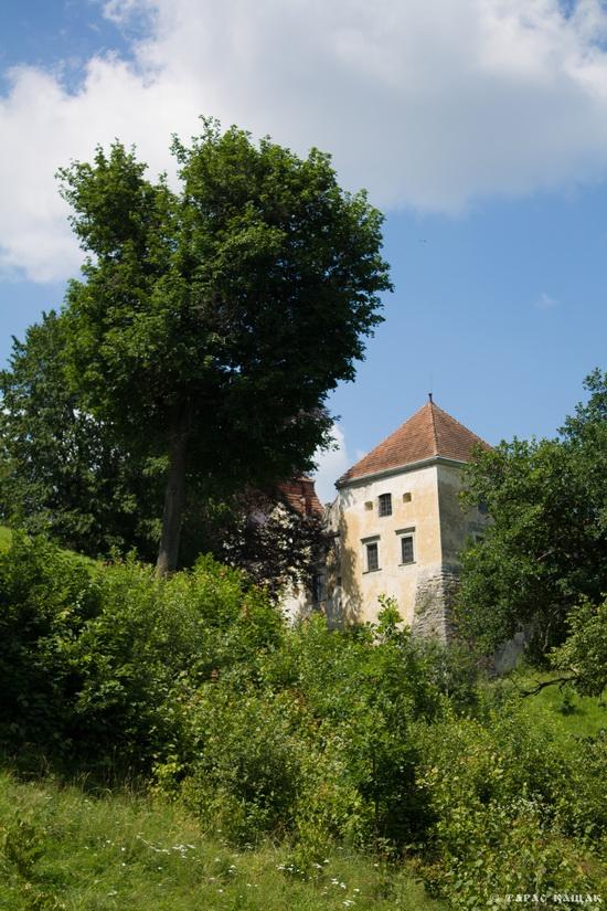 Svirzh Castle, Lviv region, Ukraine, photo 16