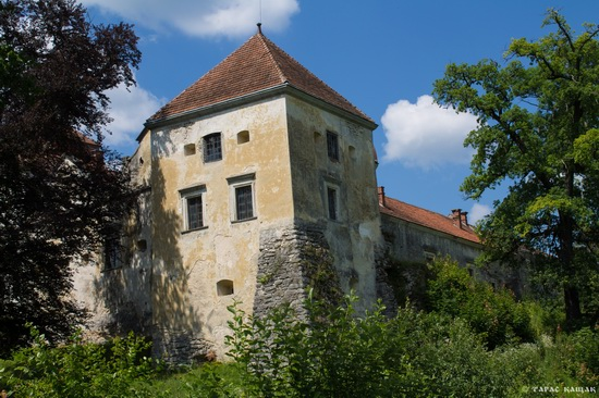 Svirzh Castle, Lviv region, Ukraine, photo 17