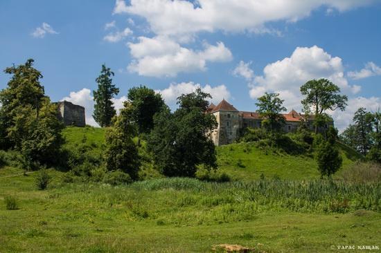 Svirzh Castle, Lviv region, Ukraine, photo 19