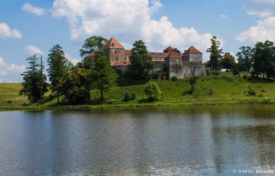 Svirzh Castle, Lviv region, Ukraine, photo 4