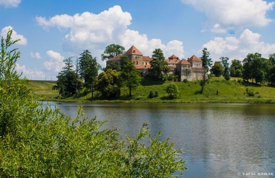 Svirzh Castle, Lviv region, Ukraine, photo 5