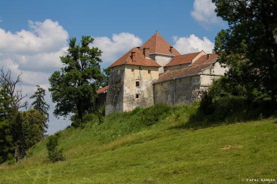 Svirzh Castle, Lviv region, Ukraine, photo 7