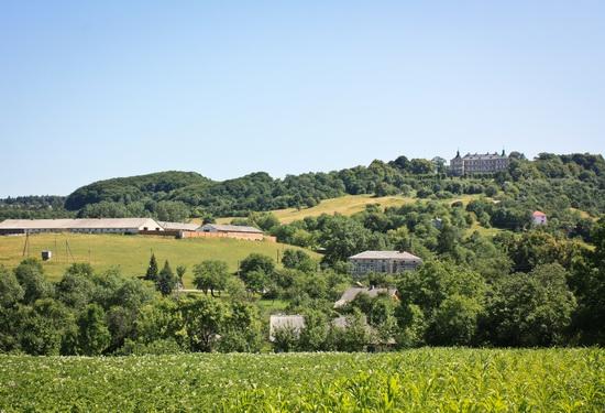 Pidhirtsi Castle, Lviv region, Ukraine, photo 25