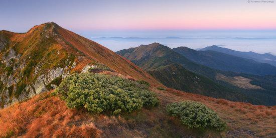 Autumn in Hutsul Alps, the Carpathians, Ukraine, photo 14
