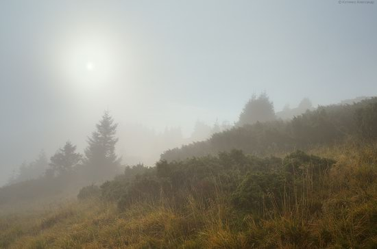 Autumn in Hutsul Alps, the Carpathians, Ukraine, photo 20