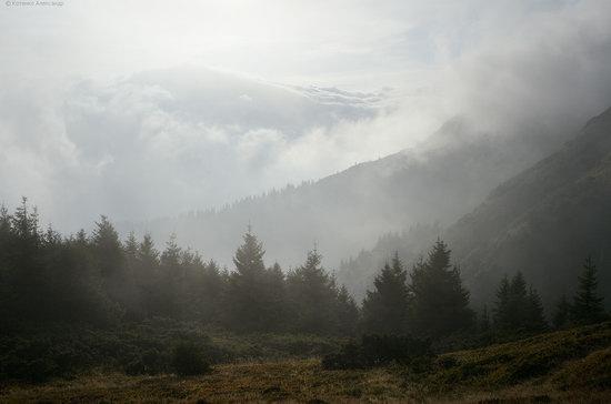 Autumn in Hutsul Alps, the Carpathians, Ukraine, photo 21