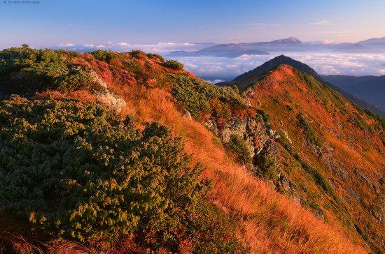 Autumn in Hutsul Alps, the Carpathians, Ukraine, photo 23
