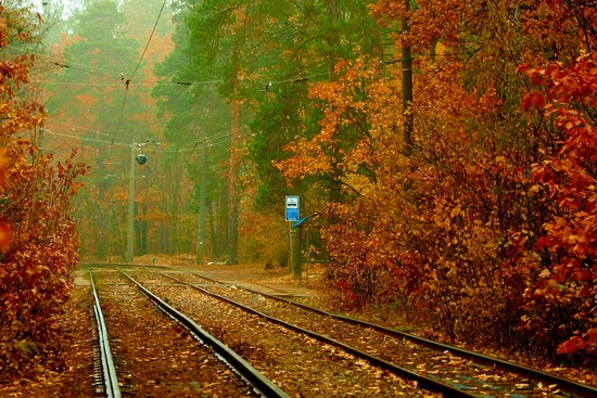 Autumn, the Kyiv Tram, Ukraine, photo 2