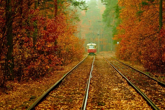 Autumn, the Kyiv Tram, Ukraine, photo 3