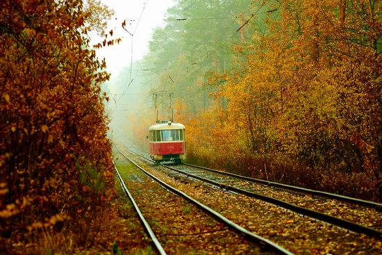 Autumn, the Kyiv Tram, Ukraine, photo 5