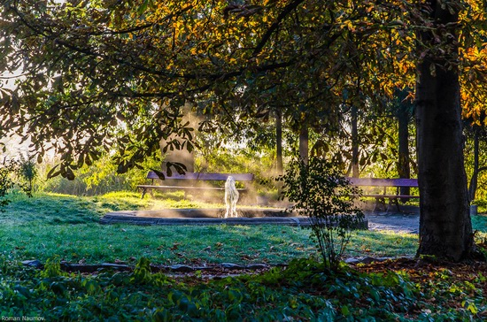 Golden Autumn in Alexandria Dendrological Park, Bila Tserkva, Ukraine, photo 11