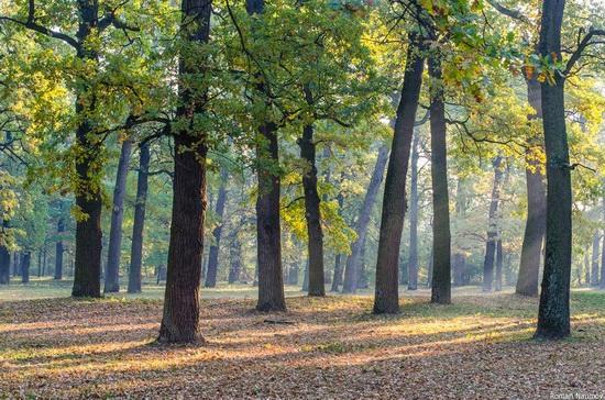 Golden Autumn in Alexandria Dendrological Park, Bila Tserkva, Ukraine, photo 18