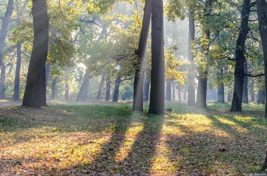 Golden Autumn in Alexandria Dendrological Park, Bila Tserkva, Ukraine, photo 19