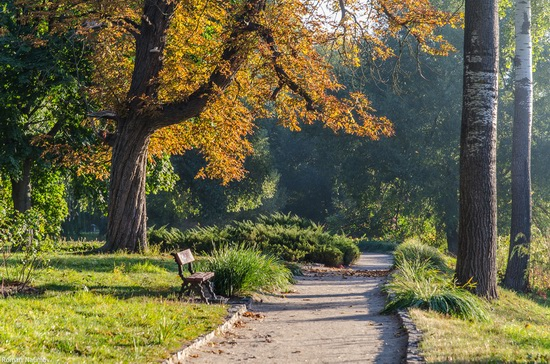 Golden Autumn in Alexandria Dendrological Park, Bila Tserkva, Ukraine, photo 2