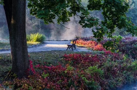 Golden Autumn in Alexandria Dendrological Park, Bila Tserkva, Ukraine, photo 3