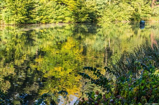 Golden Autumn in Alexandria Dendrological Park, Bila Tserkva, Ukraine, photo 6