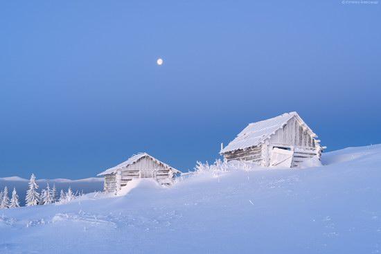 Winter fairytale of the Ukrainian Carpathians, photo 12