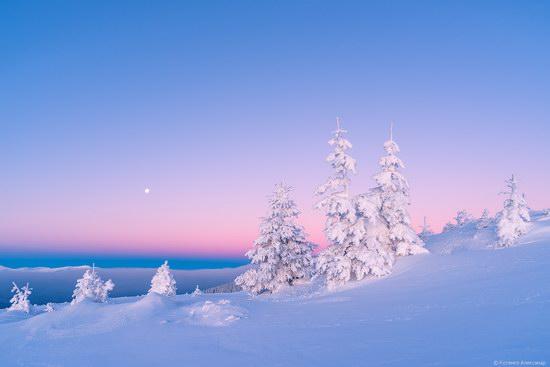 Winter fairytale of the Ukrainian Carpathians, photo 13