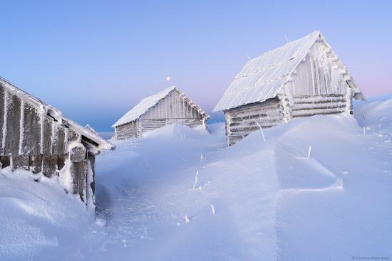 Winter fairytale of the Ukrainian Carpathians, photo 14