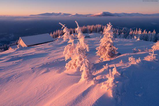 Winter fairytale of the Ukrainian Carpathians, photo 15