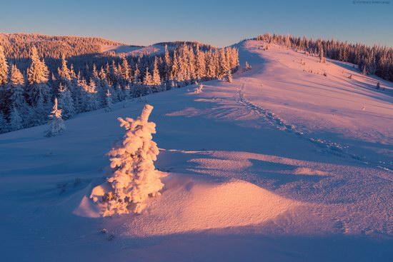 Winter fairytale of the Ukrainian Carpathians, photo 16