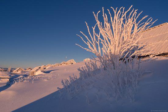 Winter fairytale of the Ukrainian Carpathians, photo 17