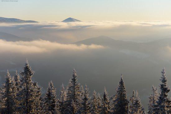 Winter fairytale of the Ukrainian Carpathians, photo 20