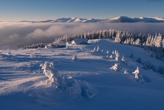 Winter fairytale of the Ukrainian Carpathians, photo 22