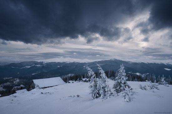 Winter fairytale of the Ukrainian Carpathians, photo 7