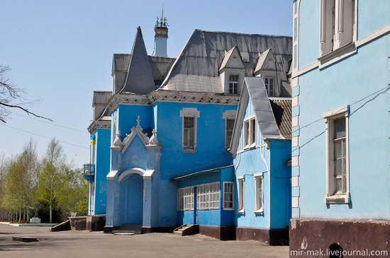 Kuris mansion, Isaevo, Odessa region, Ukraine, photo 10