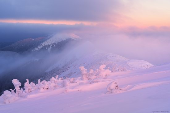 The mountain ranges of Gorgany in winter, Carpathians, Ukraine, photo 1