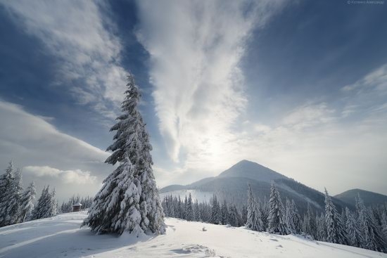 The mountain ranges of Gorgany in winter, Carpathians, Ukraine, photo 10