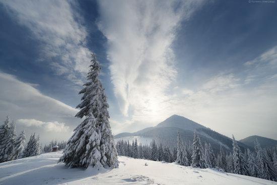 The mountain ranges of Gorgany in winter, Carpathians, Ukraine, photo 10