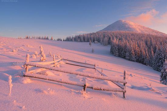 The mountain ranges of Gorgany in winter, Carpathians, Ukraine, photo 20