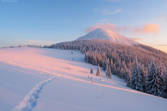 The mountain ranges of Gorgany in winter, Carpathians, Ukraine, photo 21