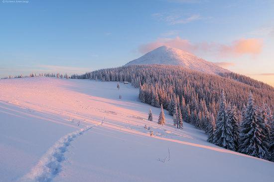 The mountain ranges of Gorgany in winter, Carpathians, Ukraine, photo 21