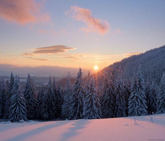 The mountain ranges of Gorgany in winter, Carpathians, Ukraine, photo 22