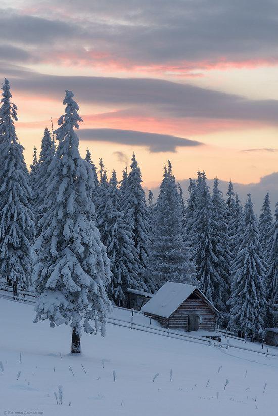 The mountain ranges of Gorgany in winter, Carpathians, Ukraine, photo 25