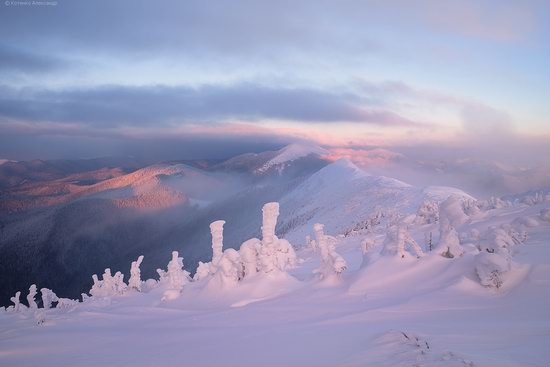 The mountain ranges of Gorgany in winter, Carpathians, Ukraine, photo 4