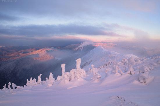 The mountain ranges of Gorgany in winter, Carpathians, Ukraine, photo 4