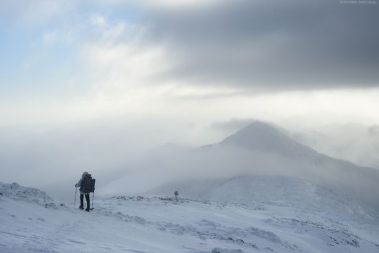The mountain ranges of Gorgany in winter, Carpathians, Ukraine, photo 6