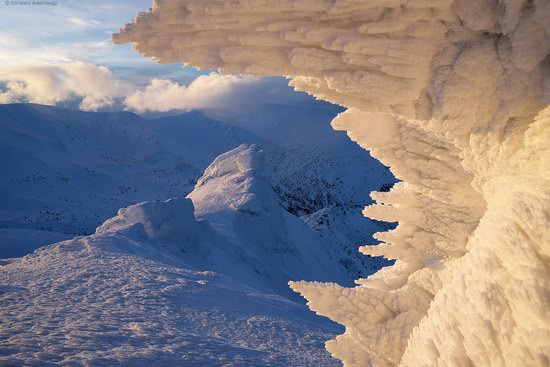 Snowy winter, Mount Pip Ivan, the Carpathians, Ukraine, photo 1